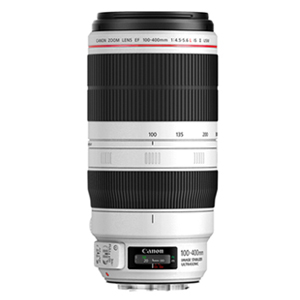 EF 100-400mm f/4.5-5.6L IS USM II(백사2)